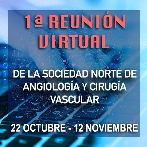 1 reunion virtual snacv
