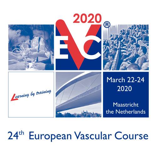 24 european vascular course