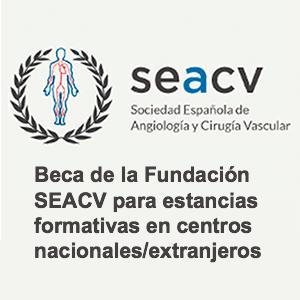 Beca de la Fundación SEACV para estancias formativas en centros nacionales/extranjeros