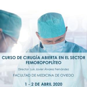 Curso de cirugía abierta en el sector femoro-poplíteo – APLAZADO