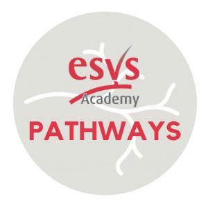 ESVS Academy Pathways
