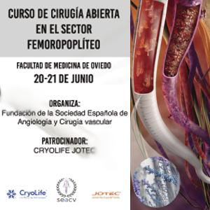 Curso de Cirugía Abierta en el Sector Fémoro-poplíteo. Oviedo 20 y 21 de junio de 2019