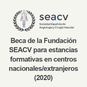 Beca de la Fundación SEACV para estancias formativas en centros nacionales/extranjeros (2020)
