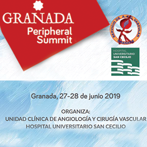 Granada Peripheral Summit 27 y 28 de junio de 2019