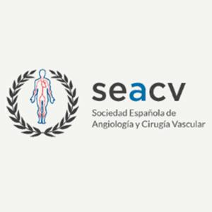 Ganadores de las Becas a proyectos de investigación de la FSEACV 2018