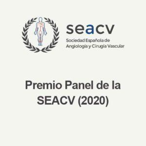 Premio Panel de la SEACV (2020)